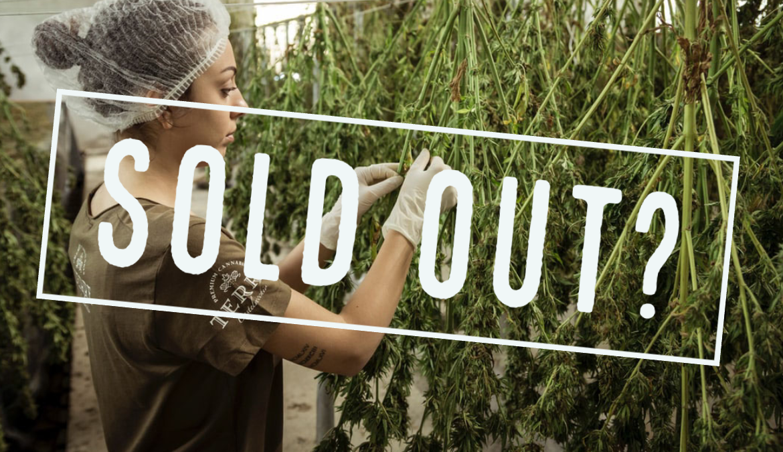 Cannabis Shortages